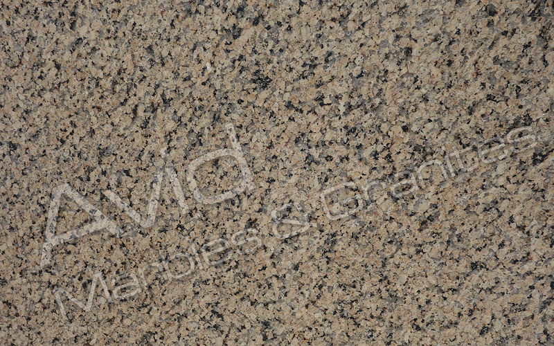 Omega Yellow Granite Manufacturers from India