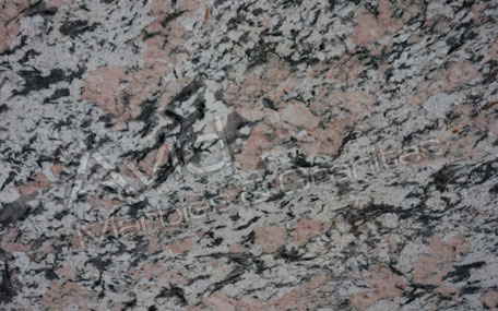 Alaska Pink Granite Wholesalers in India