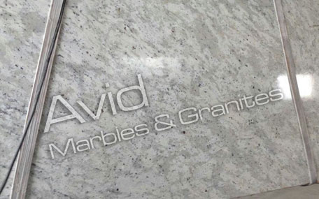 Andromeda White Granite Wholesalers in India