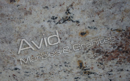 Bahama Ivory Granite Suppliers from India