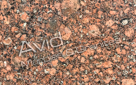 Baltic Red Granite Suppliers from India