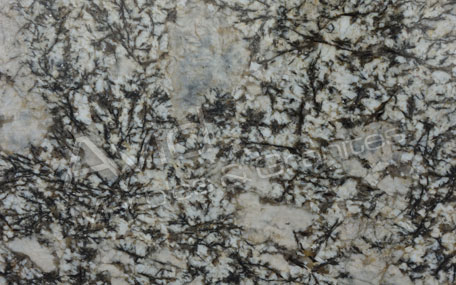 Cairo Gold Granite Wholesalers in India