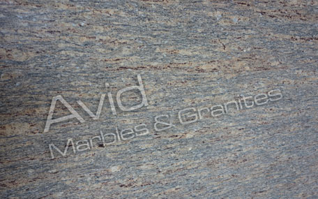 Century Brown Granite Suppliers from India