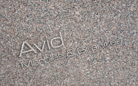 Chima Pink Granite Suppliers from India