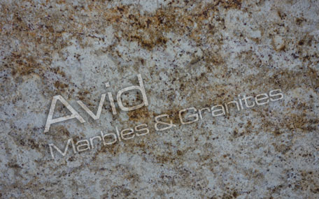 Colonial Gold Granite Suppliers from India
