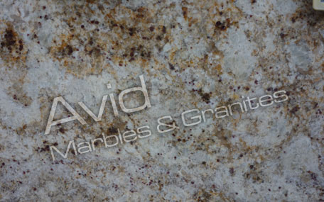 Colonial Gold Granite Wholesalers in India