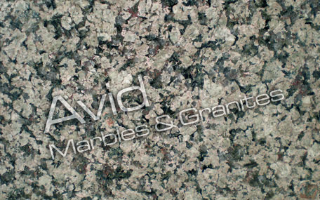 Desert Green Granite Wholesalers in India
