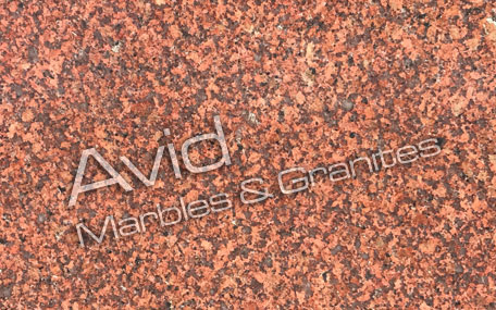 Earth Red Granite Suppliers from India