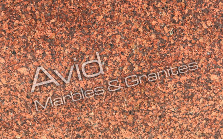 Earth Red Granite Wholesalers in India