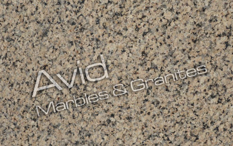 Omega Yellow Granite Suppliers from India