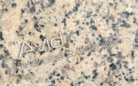 Panther Yellow Granite Exporters from India