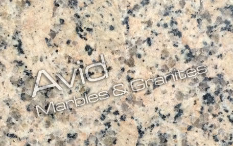 India Panther Yellow Granit