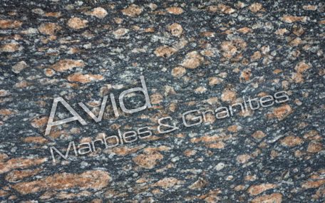 Peacock Brown Granite Suppliers from India