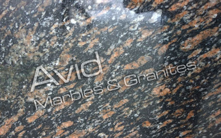 Peacock Brown Granite Exporters from India
