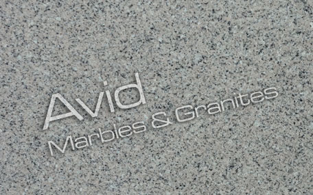 Pewter Grey Granite Suppliers from India