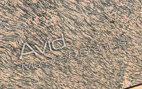 Tiger Skin Granite Suppliers from India