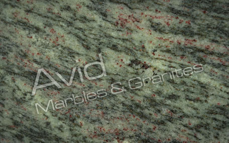 Tropical Green Granite Suppliers from India