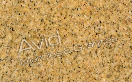 Victorian Yellow Granite Suppliers from India