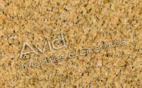 Victorian Yellow Granite Exporters from India