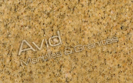 Granit Victorian Yellow India