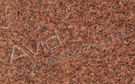Bruno Red Granite Exporters from India