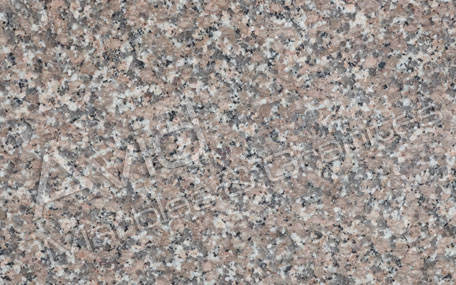 Chima Pink Granite Exporters from India