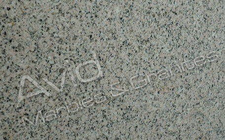 Daisy Yellow Granite Exporters from India
