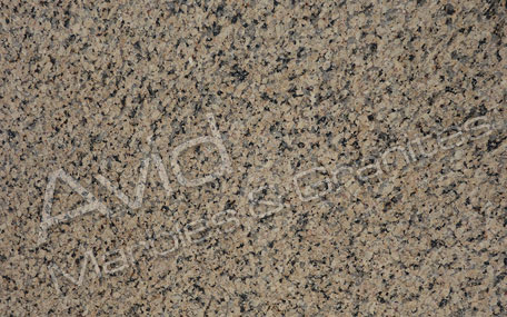 Omega Yellow Granite Exporters from India