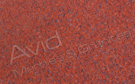 Ruby Red Granite Exporters from India