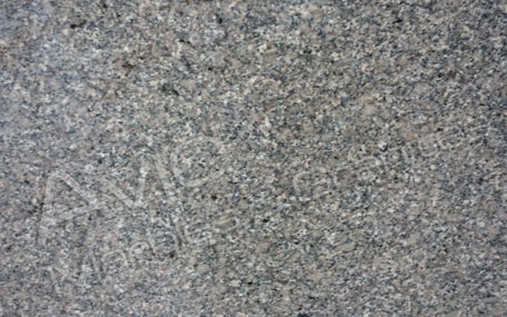 Sable Brown Granite Exporters from India