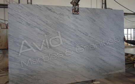 Squirrel Grey Marble Suppliers from India