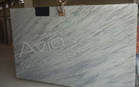 Squirrel Grey Marble Wholesalers in India
