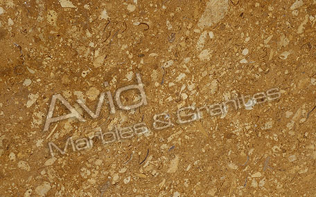 Desert Gold Marble Exporters from India