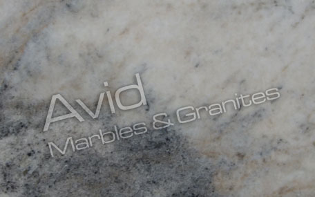 Indian Arabescato Marble Exporters from India