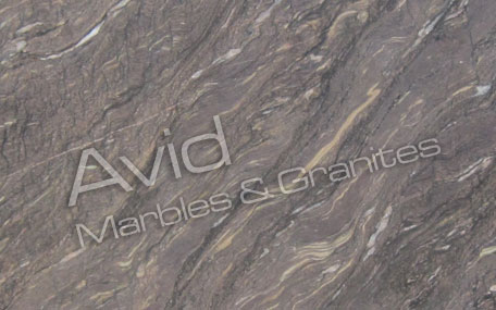 Scorpio Brown Marble Exporters from India