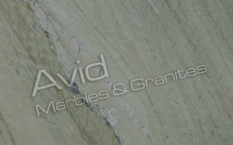 Verde Aquamarina Marble Exporters from India