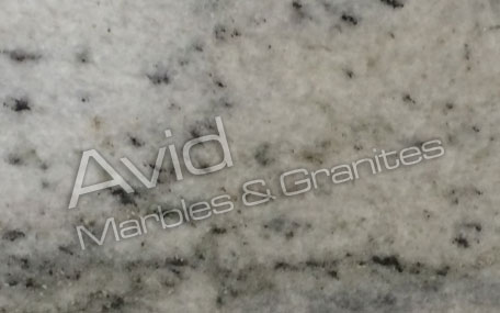 White Echo Marble Exporters from India