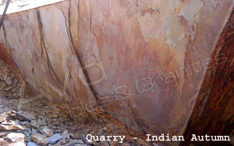 Indian Autumn Natural Ledge Stone Suppliers in India